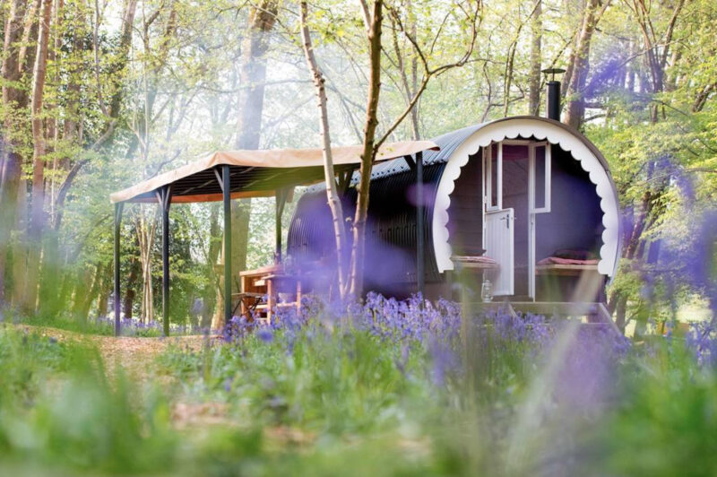 best cabins in sussex