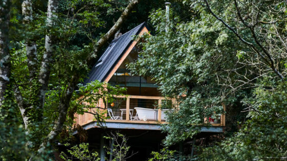 best treehouses in devon