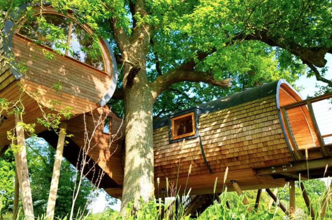 cheriton treehouse somerset