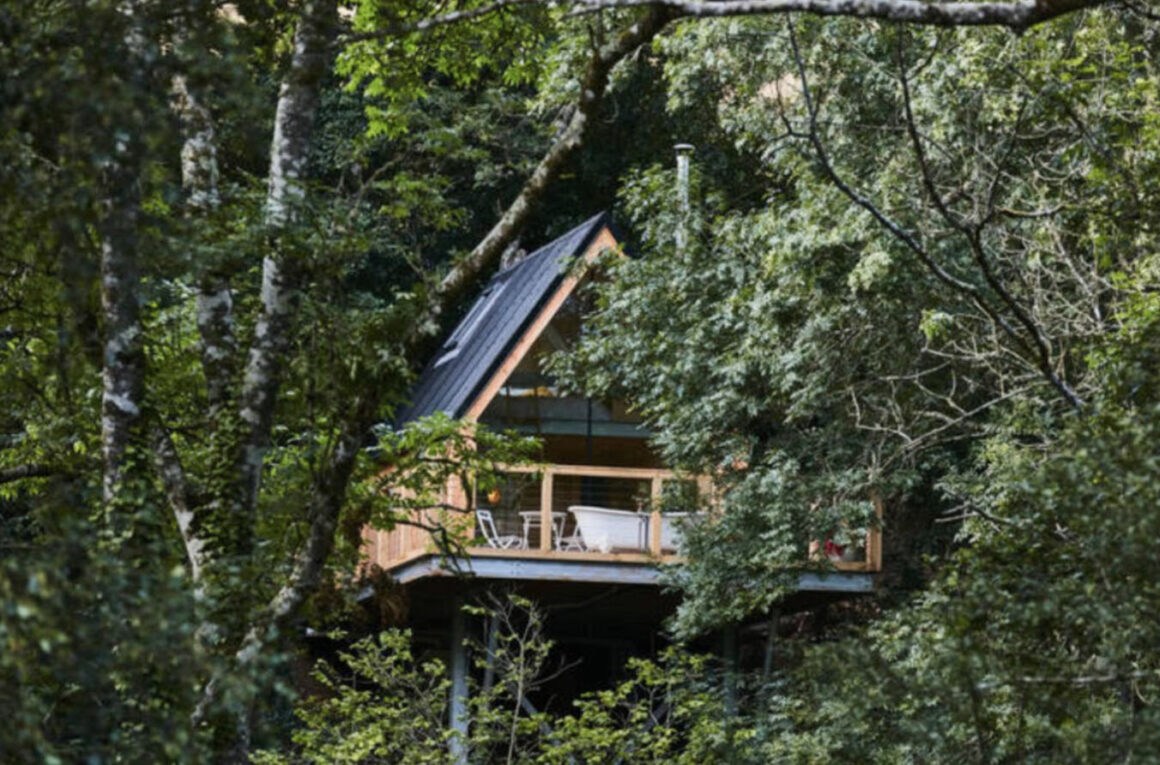 cleave treehouse